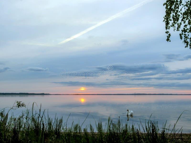 与摘要生动的紫色桃红色日落反射在Razna湖水,拉脱维亚中的太阳和多云天空的背景 免版税图库摄影