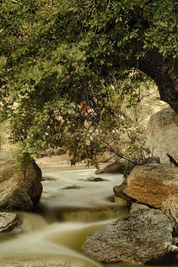 与慢河的秋天风景 库存图片