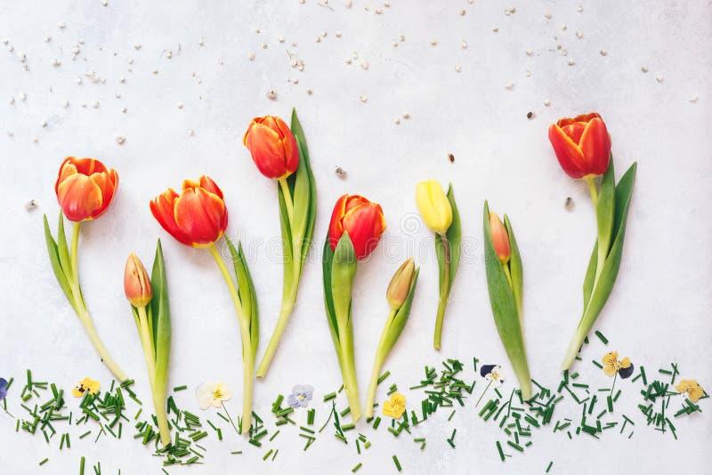 与拷贝空间的春天复活节郁金香花卉背景 免版税库存图片