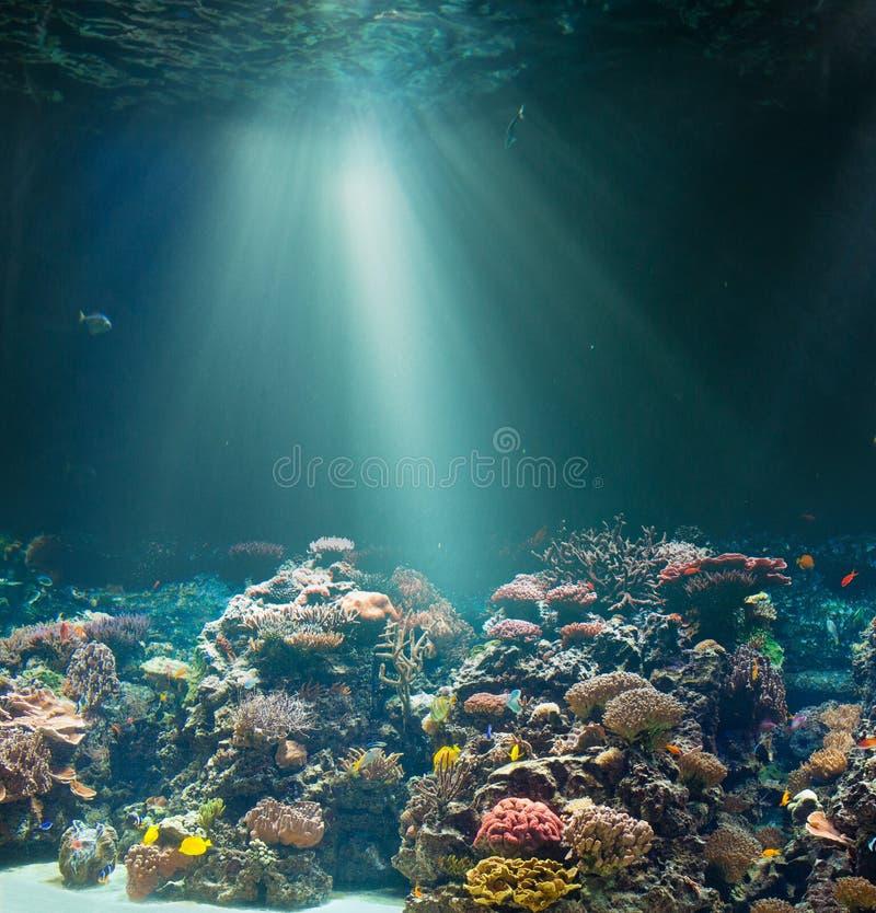 与珊瑚礁的海或海洋海底 蓝色颜色虚拟水下的视图 免版税库存图片