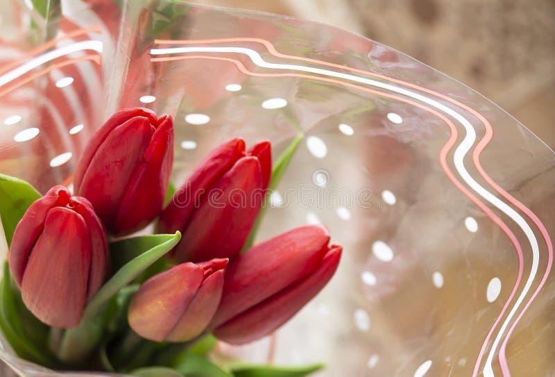 与绿色板料的花束红色郁金香 免版税库存图片
