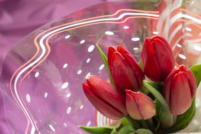 与绿色板料的花束红色郁金香 库存照片