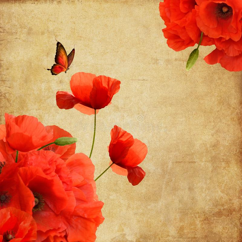 与蝴蝶的红色鸦片背景 向量例证