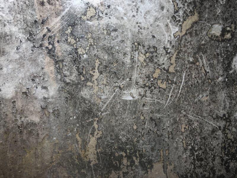 与黑地衣的黑暗的墙壁水泥纹理 免版税库存图片