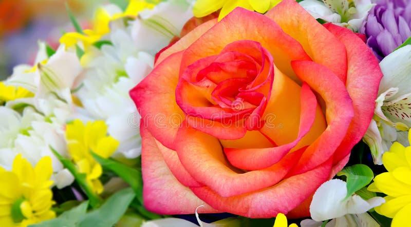 与黄色红色玫瑰的花束在中心 库存图片
