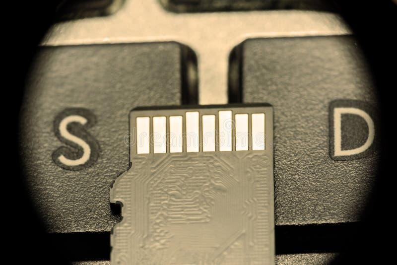 与金联络的黑微sd卡片在与字母S和信件D的钥匙 免版税库存图片
