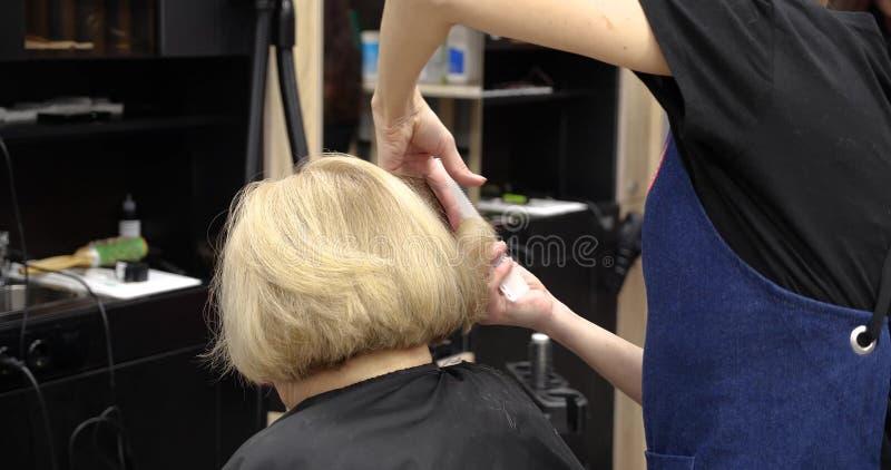 专业美发师,梳女性客户的头发和剪在专业美发店的美发师头发 免版税库存照片