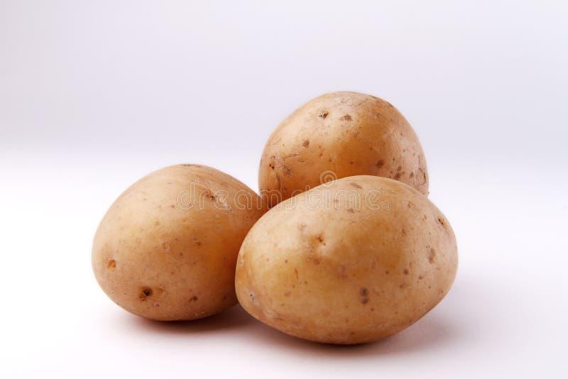 三在白色backgroun的土豆 库存照片
