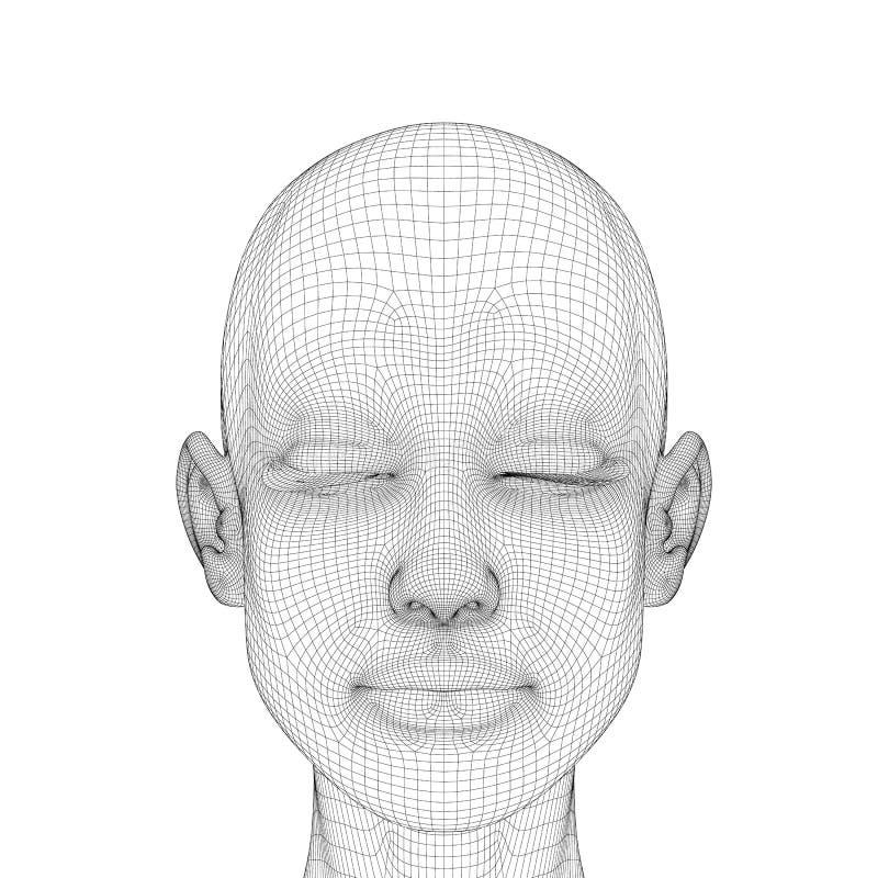 一个女孩的头的Wireframe有一只镇静表情和闭合的眼睛的 在白色隔绝的多角形女孩头 向量例证