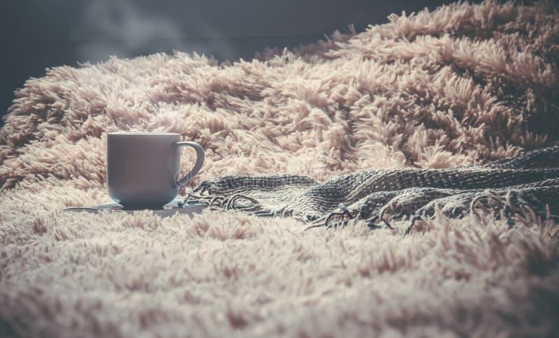 一个杯子在毯子下的naya谎言 选择聚焦 库存图片