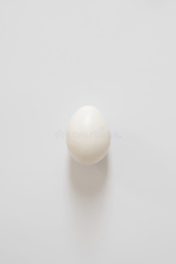 一个新鲜的白鸡蛋在白色背景说谎 您的字法的拷贝空间 库存图片