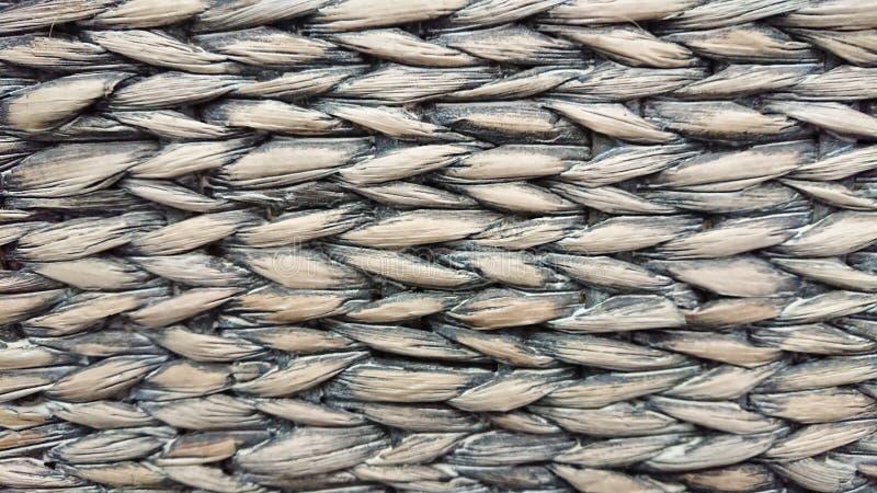 一个老柳条干玉米茎的背景 软绵绵地集中 免版税库存照片