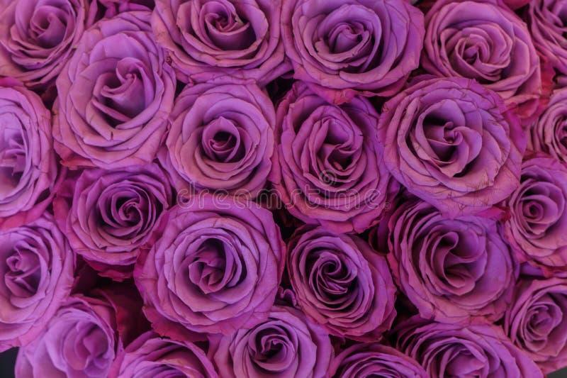 一一抱轻的丁香,在花束的新鲜的玫瑰 库存图片