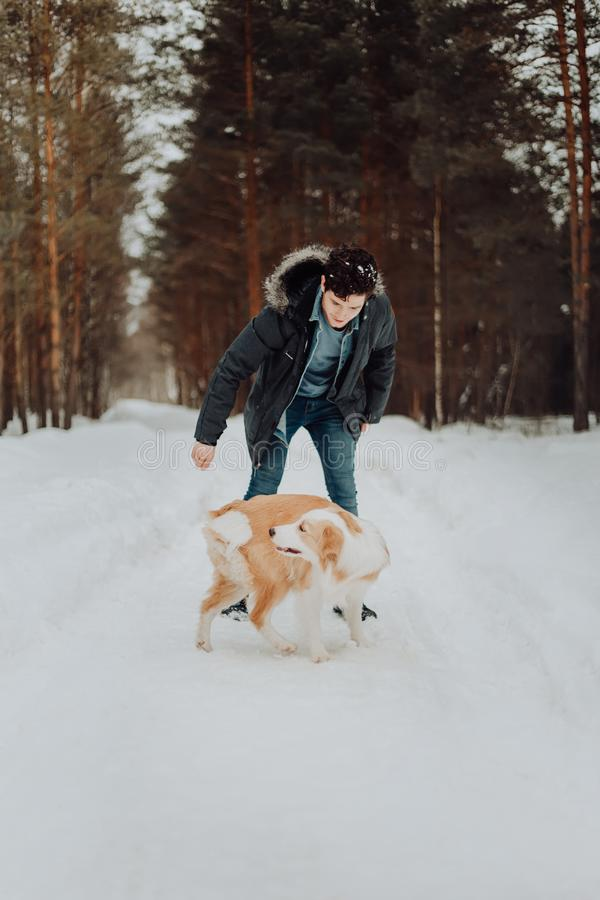 一件牛仔布夹克的一个快乐的人在一件温暖的夹克在冬天雪森林里走一只红色狗博德牧羊犬概念 库存照片
