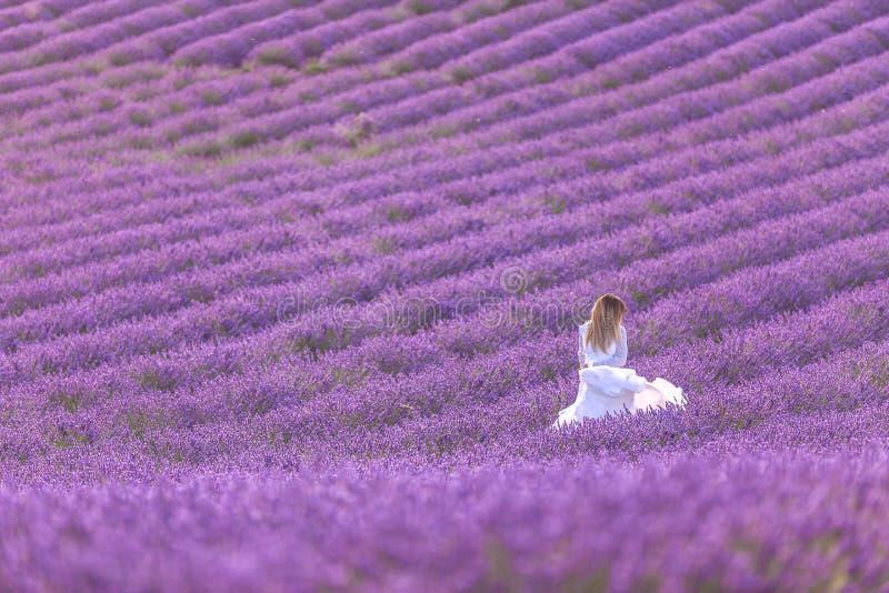 一件白色礼服的美女享受在淡紫色领域的夏天在日落 库存照片