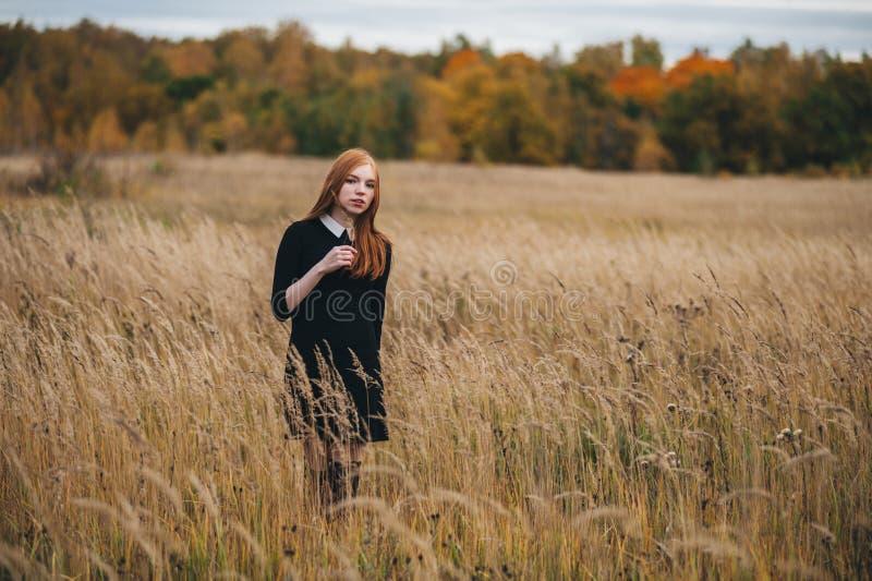 一件黑礼服的美丽的红发妇女在秋天领域走 免版税库存图片