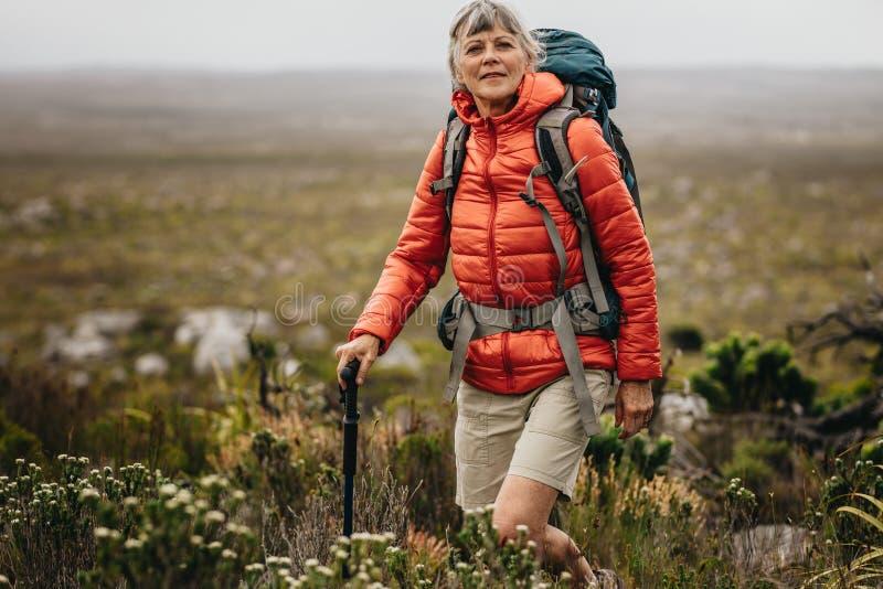 一名妇女的画象一次迁徙的竞选的 免版税库存照片