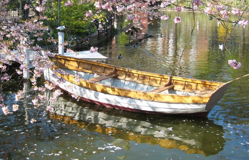 一条木小船的浪漫看法在哥本哈根在丹麦由花海围拢了在一个小湖 库存图片