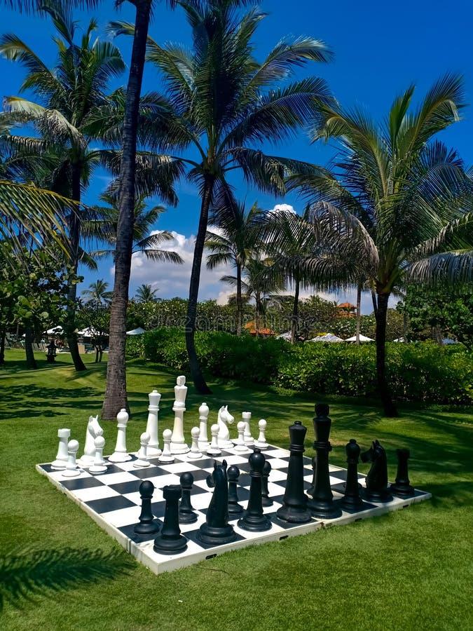 一杆大棋枰在一个美丽的庭院里 免版税库存照片