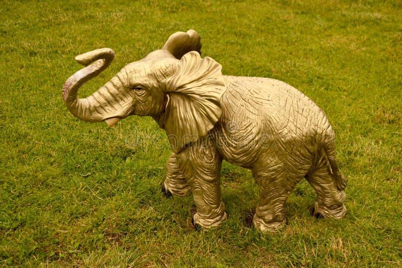 一点在绿草的婴孩大象 库存照片