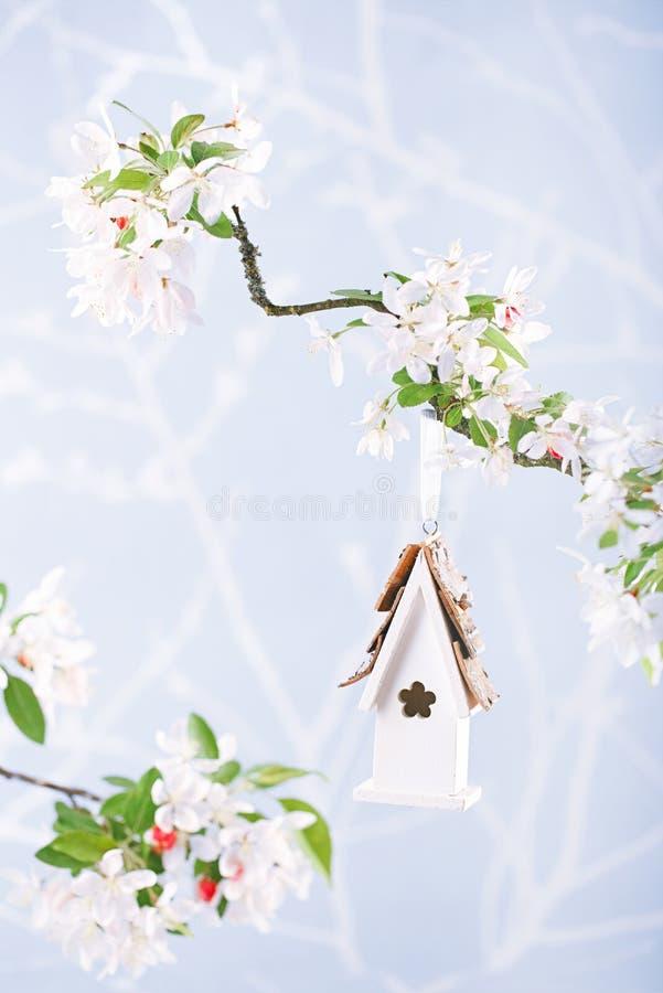 一点鸟舍在有开花樱桃花的春天 图库摄影