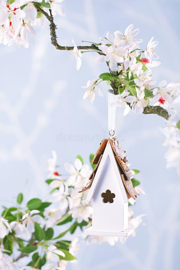 一点鸟舍在有开花樱桃花的春天 免版税库存图片