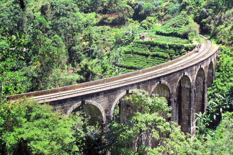 九曲拱桥梁在密林,斯里兰卡 免版税库存图片