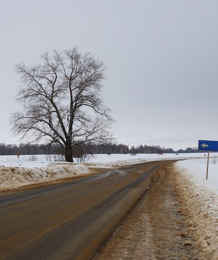 乡下公路在冬天 免版税库存照片