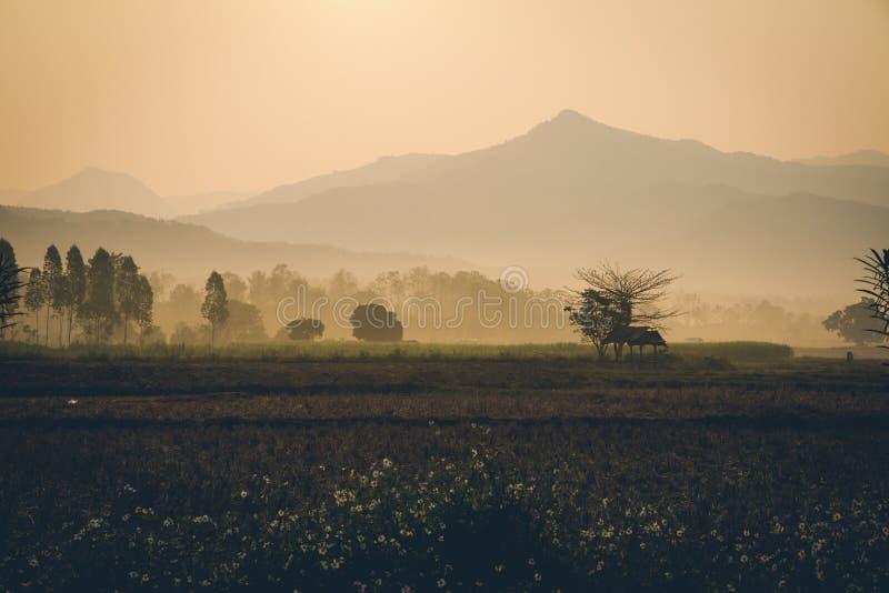 乡下风景早晨一会儿日出的 与山和雾的农村大气在背景 图库摄影