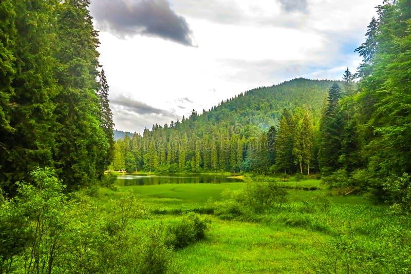 乌克兰喀尔巴阡山脉32 库存图片