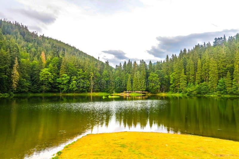 乌克兰喀尔巴阡山脉36 免版税图库摄影