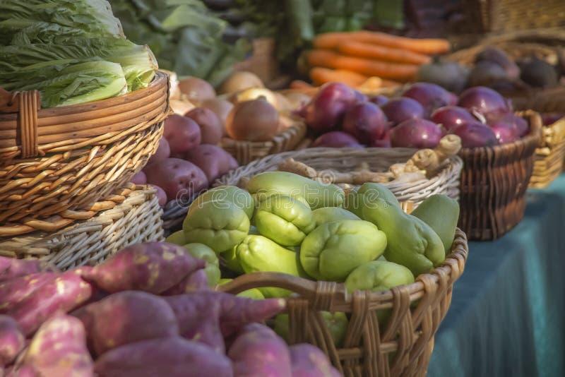 产物新显示在农夫市场上 库存照片