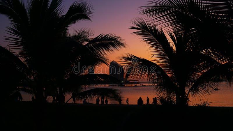 人剪影热带海滩的在日落-享受时间的游人 库存图片