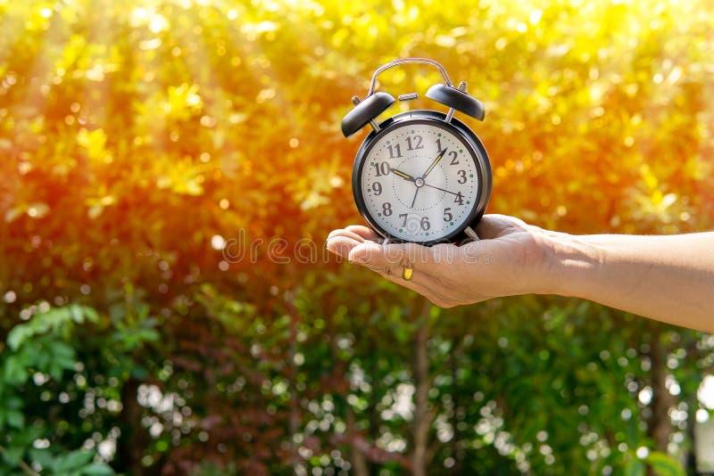人藏品闹钟在阳光和公园背景给时间或划分某事的时刻的展示概念下-划分 免版税库存照片