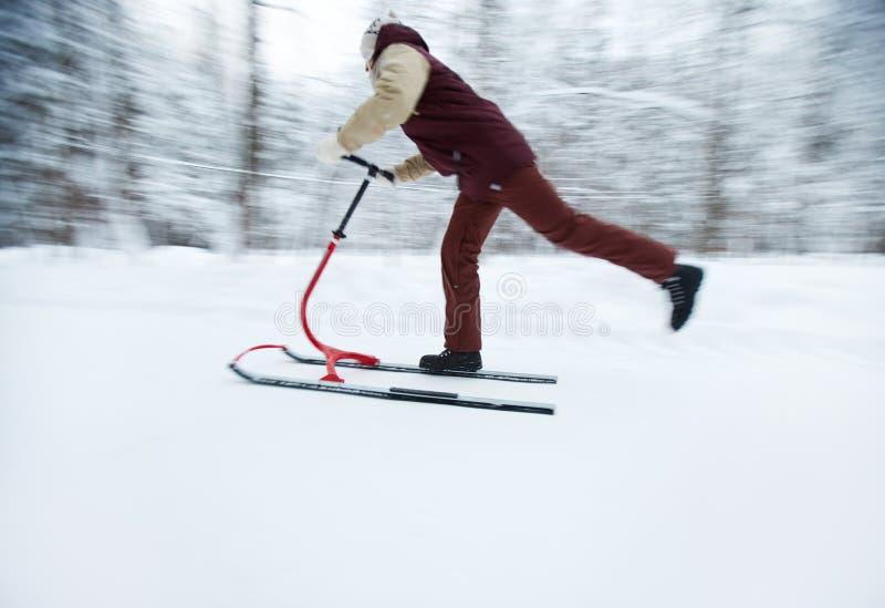 人骑马雪橇 库存照片