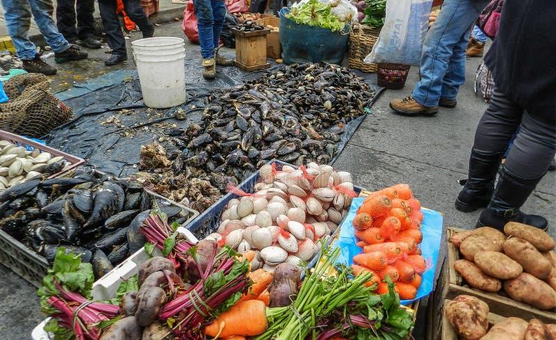 五颜六色的街市在卡尔布科火山,智利,有从海和土地的新鲜的产品的 免版税库存图片