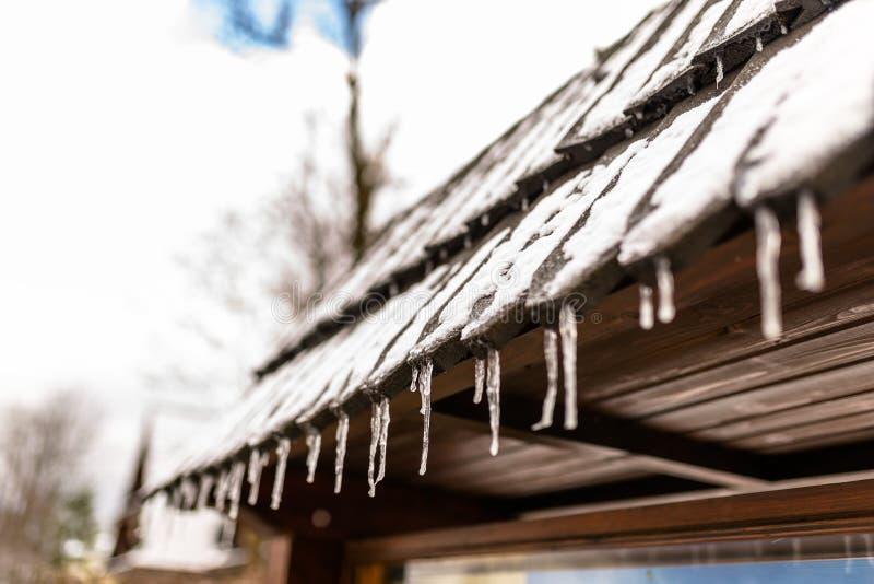 从一个木大厦在一冬天冷淡的天,在屋顶的很多雪的屋顶的垂悬的冰柱 免版税库存照片