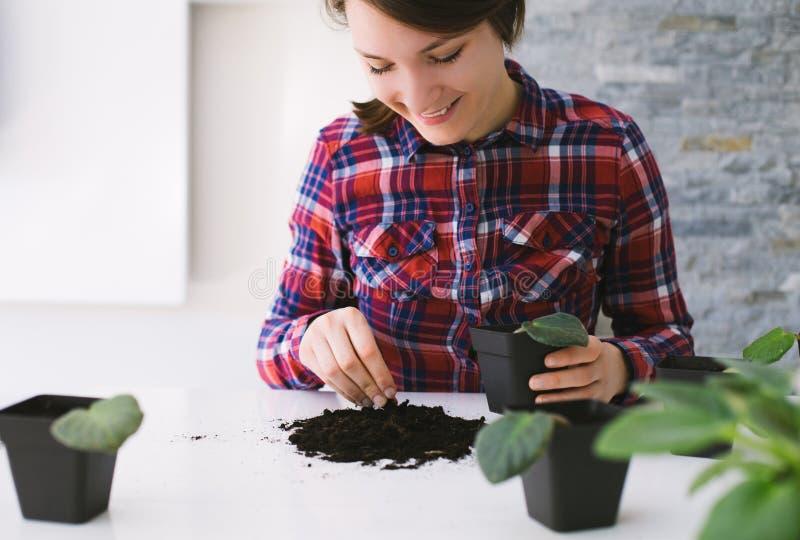 从事园艺妇女的家调迁房子植物 图库摄影