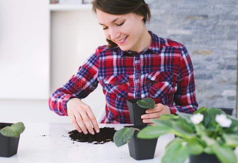 从事园艺妇女的家调迁房子植物 库存图片