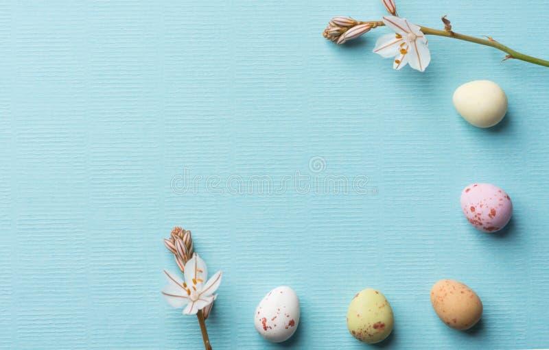 从多彩多姿的有斑点的朱古力蛋的框架反弹在浅兰的背景的领域花与布纹纸纹理 复活节 库存图片