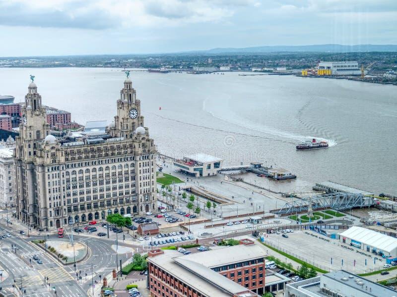 从利物浦上的肝脏大厦 图库摄影