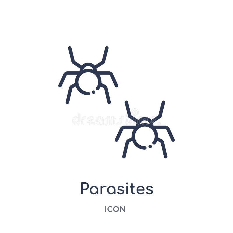 从教育概述汇集的线性寄生生物象 稀薄的线在白色背景隔绝的寄生生物象 时髦的寄生生物 向量例证