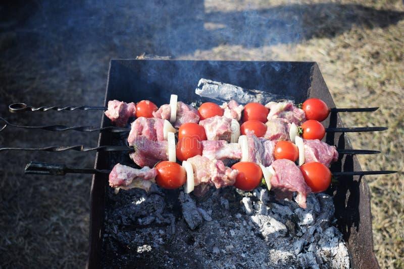 从猪肉,蕃茄的水多的烤肉串,油煎在火室外在自然背景  免版税图库摄影