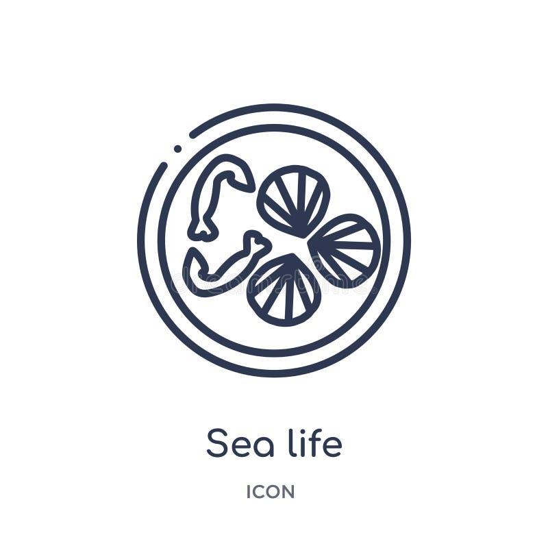 从食物概述汇集的线性海洋生活象 稀薄的线在白色背景隔绝的海洋生活象 时髦的海洋生活 皇族释放例证