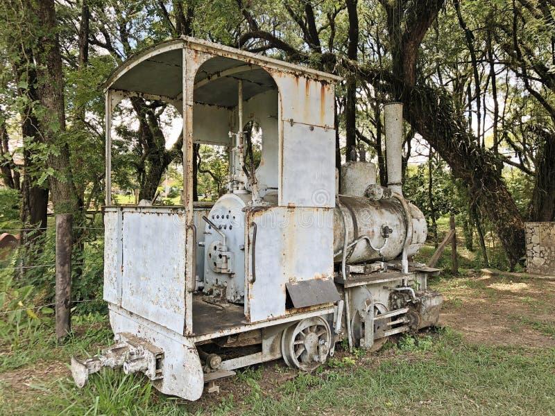 伊帕内马农场索罗卡巴巴西 免版税库存照片