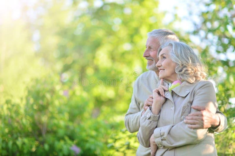 休息在春天公园的逗人喜爱的愉快的资深夫妇画象  免版税库存图片