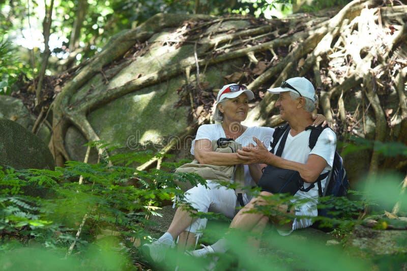 休息在热带庭院里的年长夫妇画象户外 免版税库存照片