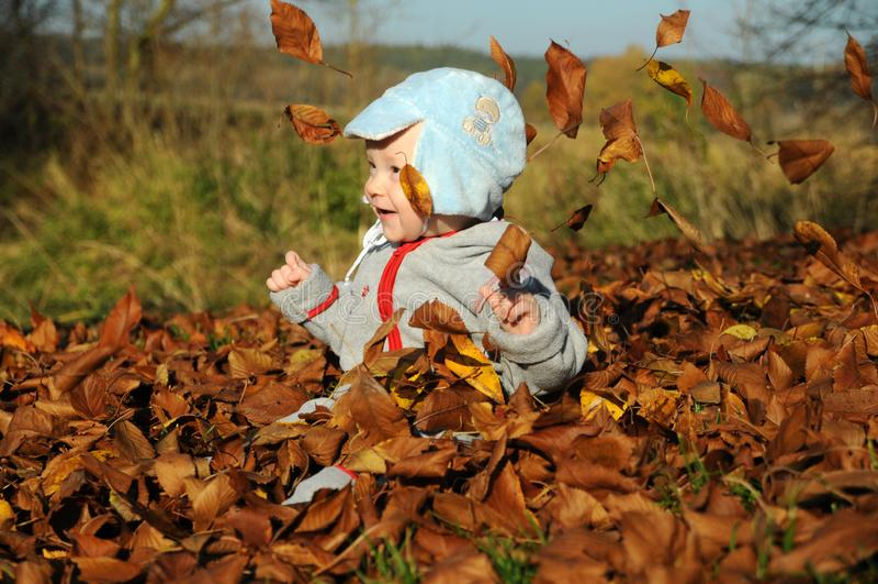 使用与黄色秋天叶子的愉快的小男孩画象在自然户外公园 库存照片