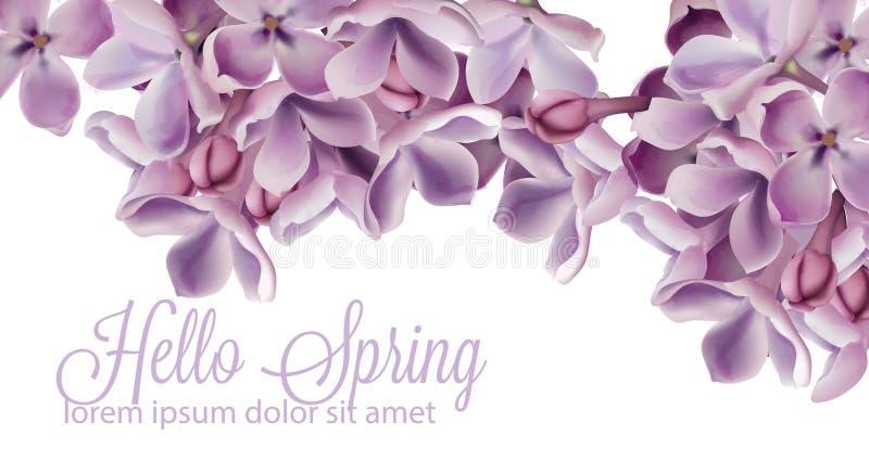你好与紫色淡紫色花传染媒介水彩的春天背景 浪漫花卉婚礼或贺卡装饰 妇女 皇族释放例证