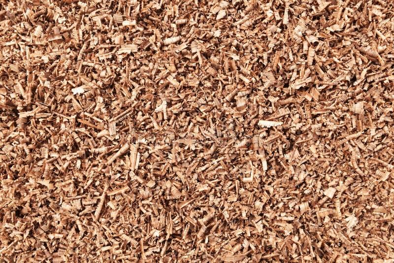信件是在木头的锯看见了在白色背景的尘土 免版税图库摄影